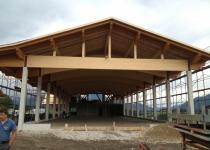 Hallen-u.-Landwirtschaftliche-Gebäude-3
